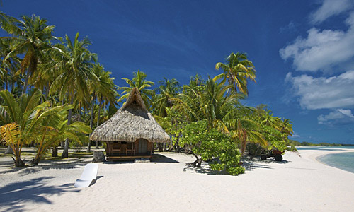 Urlaub einsame insel le sauvage rangiroa pacific pearls for Rangiroa urlaub