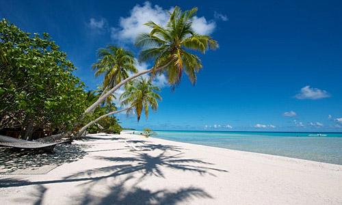 Urlaub einsame insel le sauvage rangiroa pacific pearls - Rangiroa urlaub ...